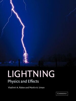 *** LIGHTNING. PHYSICS AND EFFECTS