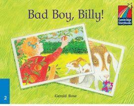BAD BOY, BILLY! -STORYBOOKS