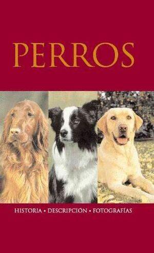 PERROS - HISTORIA/DESCRIPCION/FOTOGRAFIAS