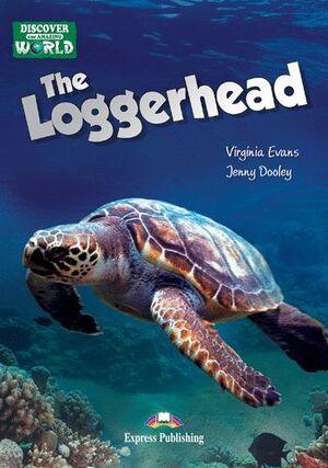 THE LOGGERHEAD