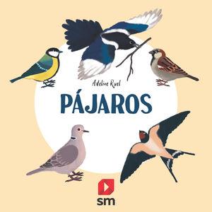 PAJAROS -NATURALEZA