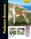 PODENCO IBICENCO. SERIE EXCELLENCE: RAZAS DE HOY