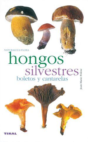 HONGOS SILVESTRES. BOLETOS Y CANTARELAS. NATURALEZA-FLORA