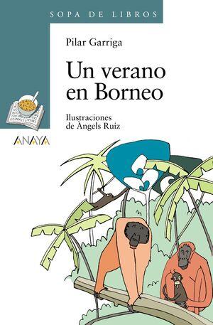UN VERANO EN BORNEO -SOPA DE LIBROS